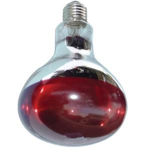 Bóng đèn hồng ngoại